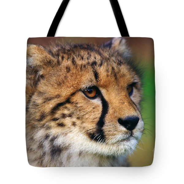 Tote Bag featuring the photograph Portrait Of A Cheetah Cub by Nick  Biemans