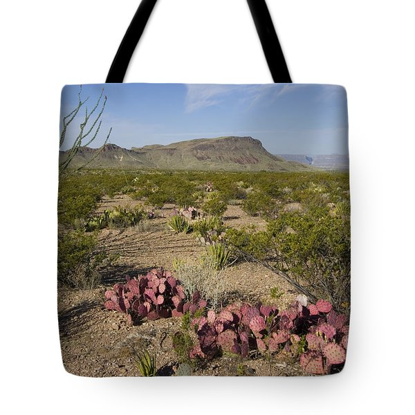 Prickly Pear In Chihuahuan Desert, Texas Tote Bag