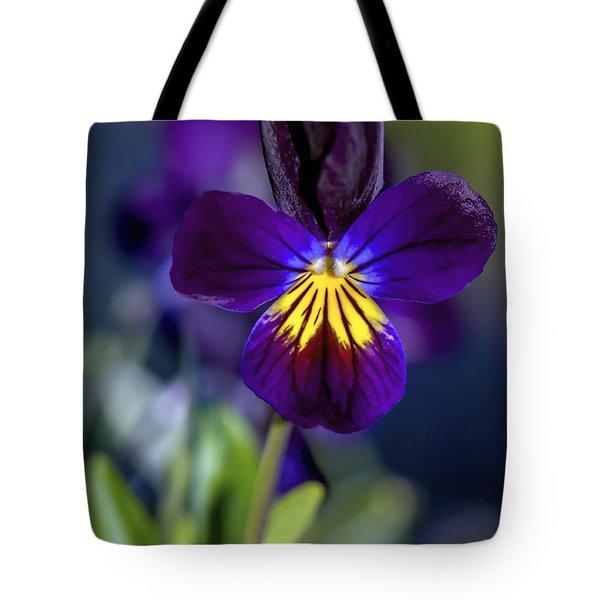 Purple Viola Tote Bag