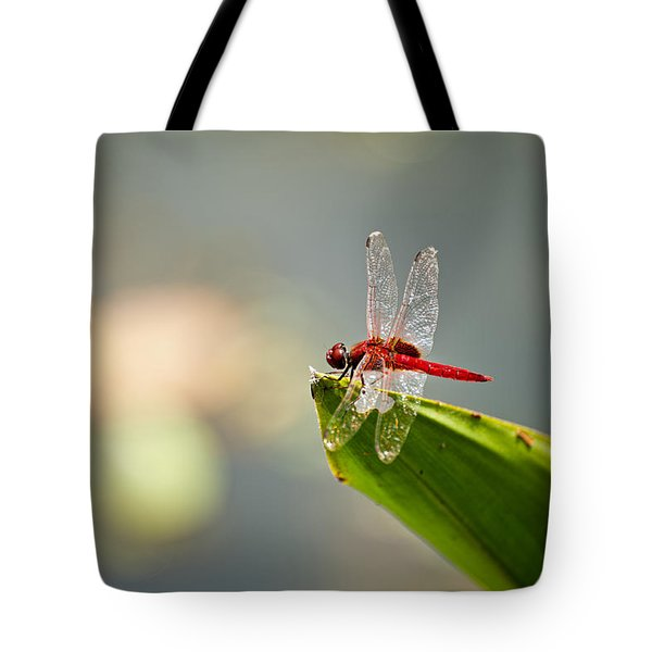 Red Dragonfly Tote Bag by Ulrich Schade