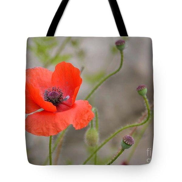 Red Tote Bag by Lisa L Silva