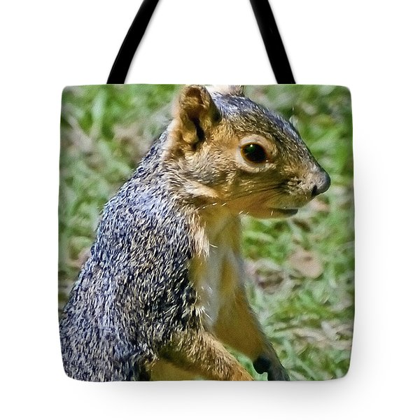 Red Squirrel Tote Bag by Bob and Nadine Johnston