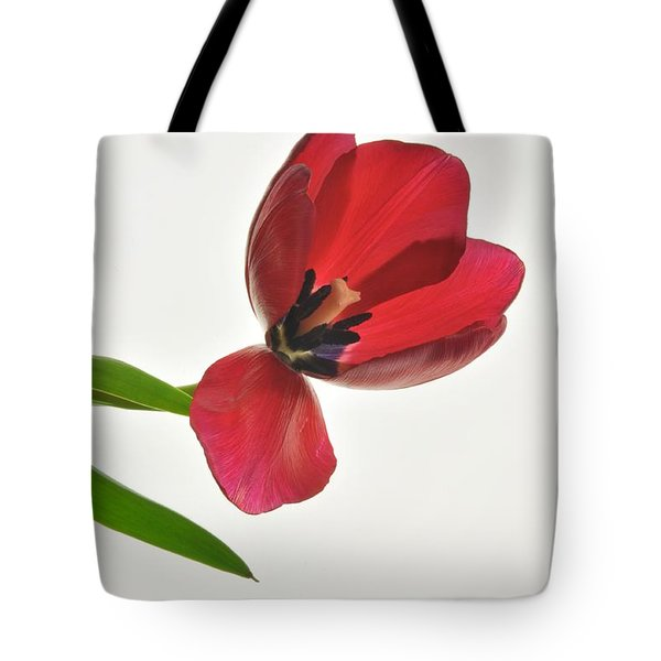 Red Transparent Tulip Tote Bag