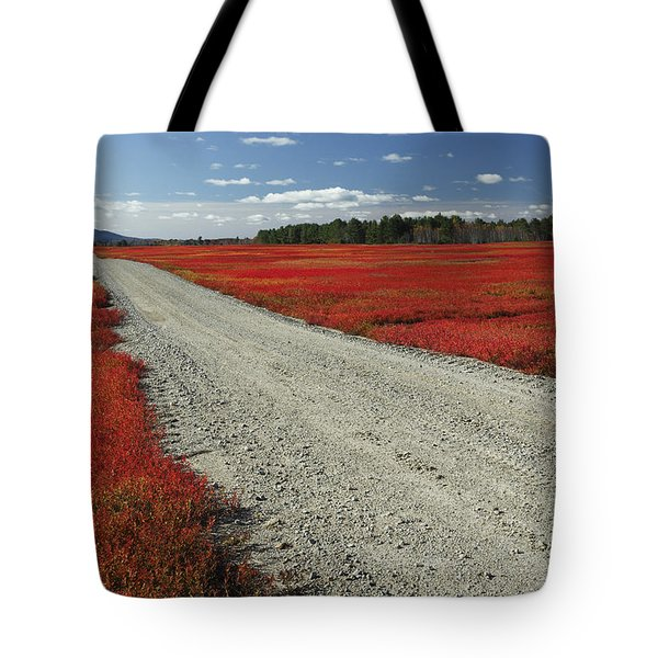 Road Through Autumn Blueberry Maine Tote Bag by Scott Leslie