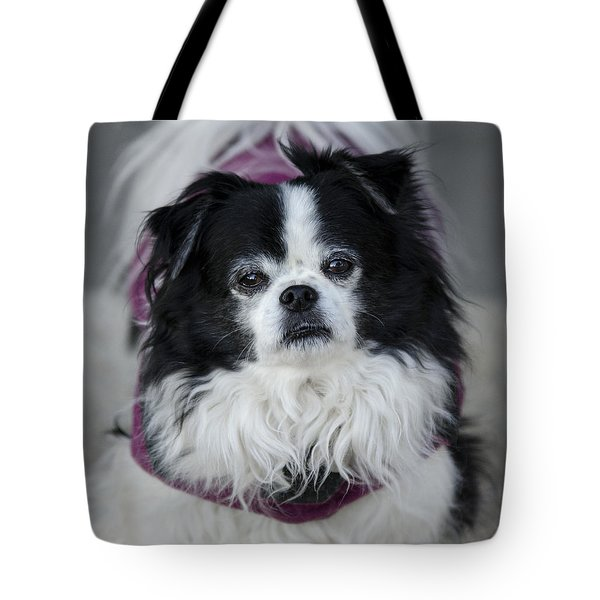 Romeo  Tote Bag by Saija  Lehtonen