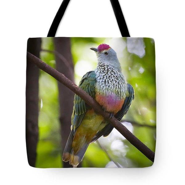 Rose-crowned Fruit-dove Australia Tote Bag