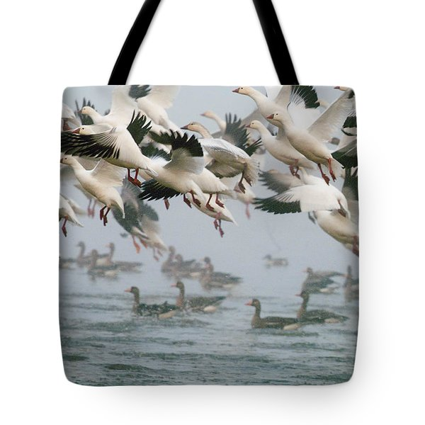 Ross's Goose Tote Bag by Doug Herr