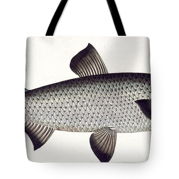 Salmon Tote Bag by Andreas Ludwig Kruger