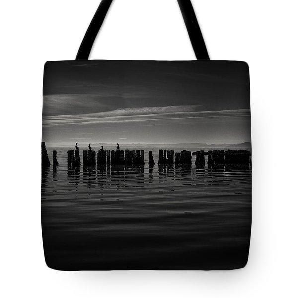 Salton Sea Piles Tote Bag