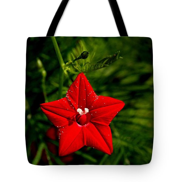 Scarlet Morning Glory Tote Bag