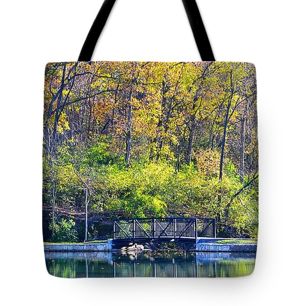 Sequiota Park Tote Bag by Deena Stoddard