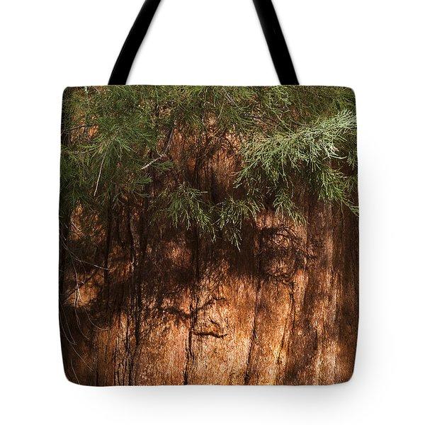 Sequoia Tote Bag by Muhie Kanawati