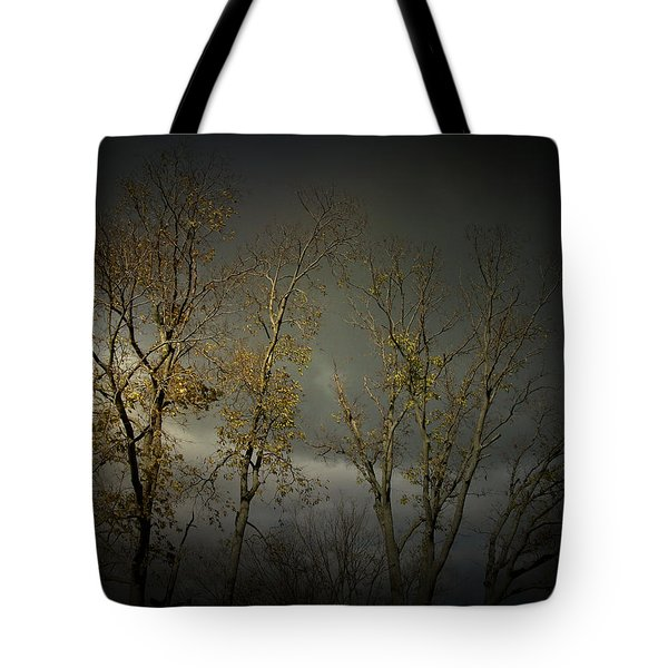 Shine 2 Tote Bag by Cynthia Lassiter