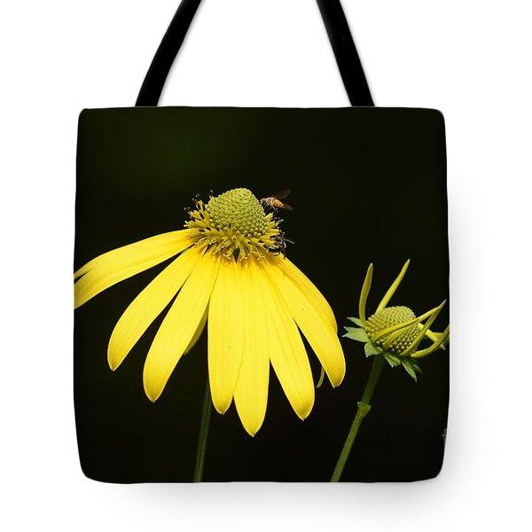 Simple Things Tote Bag by Randy Bodkins
