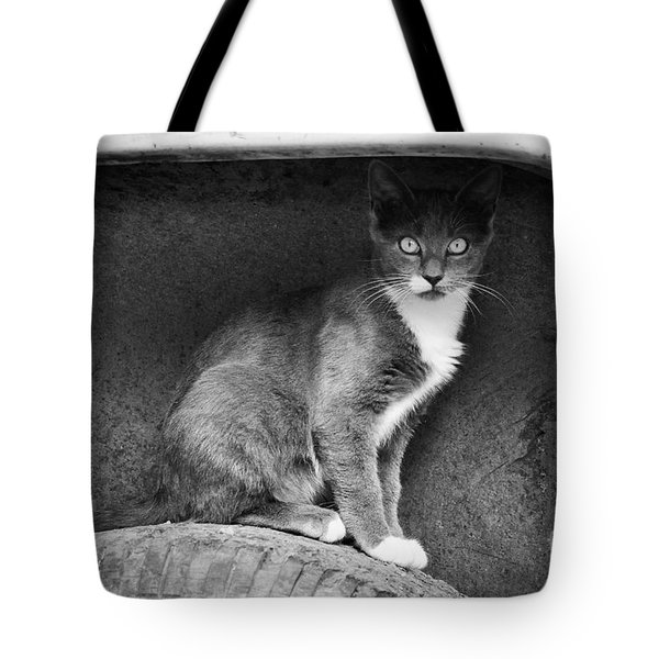 Skitty Tote Bag by Cheryl McClure