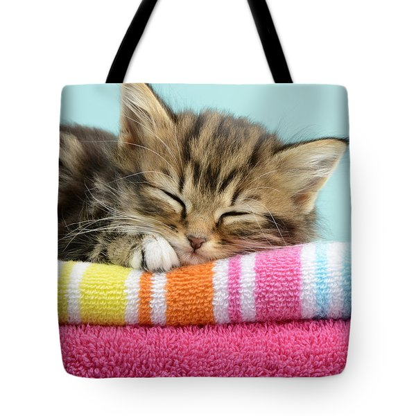Sleepy Kitten Tote Bag by Greg Cuddiford