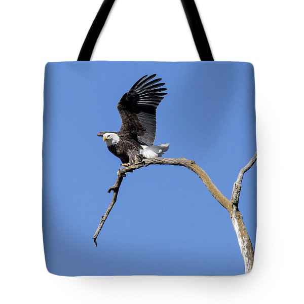 Tote Bag featuring the photograph Smooth Landing 4 by David Lester