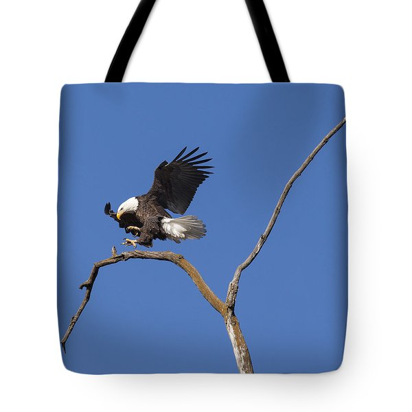 Tote Bag featuring the photograph Smooth Landing 5 by David Lester