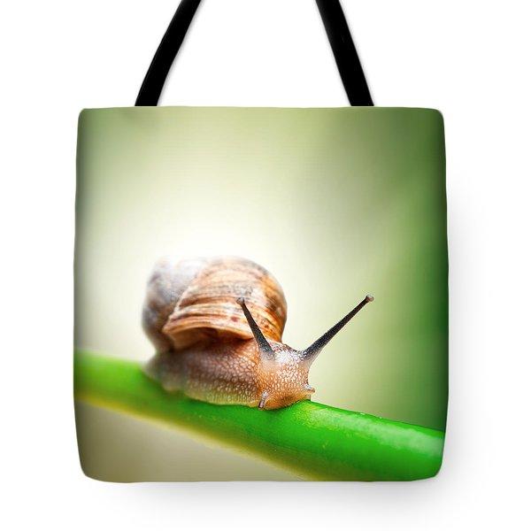Snail On Green Stem Tote Bag