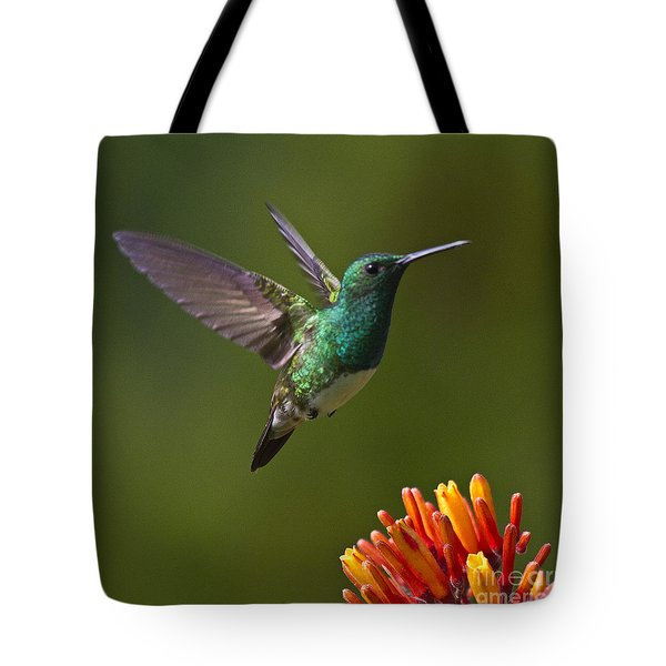 Snowy-bellied Hummingbird Tote Bag by Heiko Koehrer-Wagner
