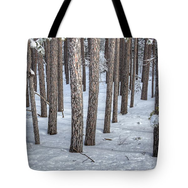 Snowy Woods Tote Bag by Donna Doherty