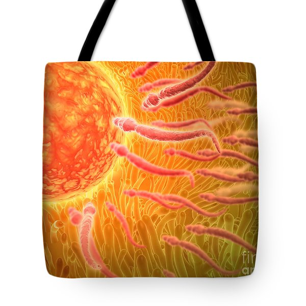 Sperm Traveling Towards Egg With Cellia Tote Bag by Stocktrek Images