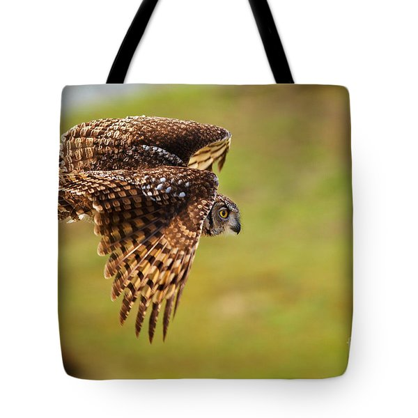 Spotted Eagle Owl In Flight Tote Bag