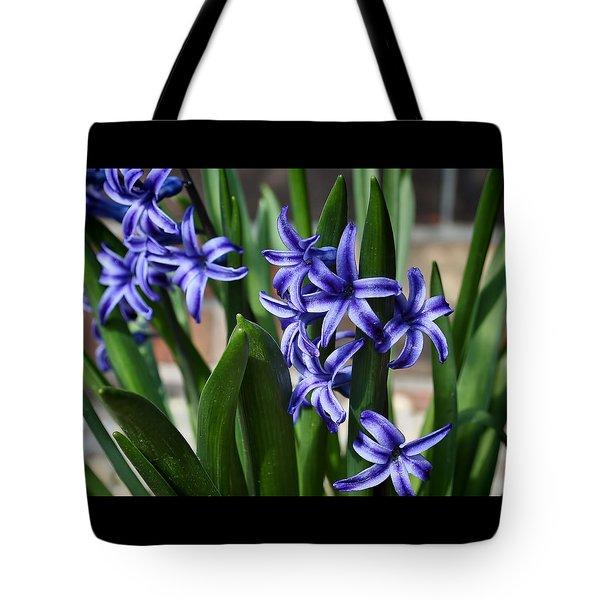 Spring Hyacinths Tote Bag