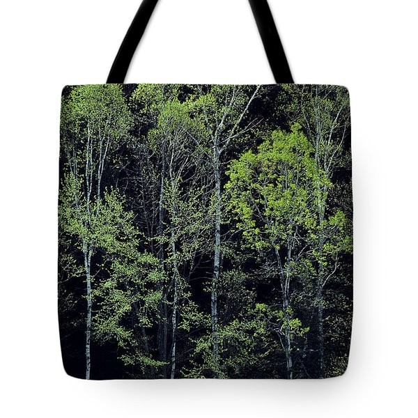 Tote Bag featuring the photograph Spring Lights by Alan L Graham