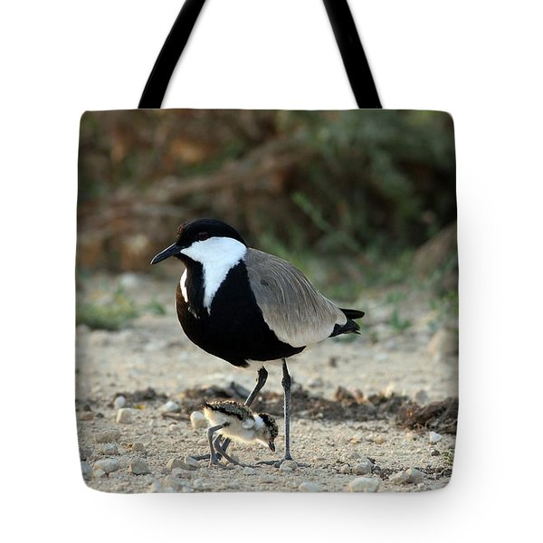 Spur-winged Plover And Chick Tote Bag