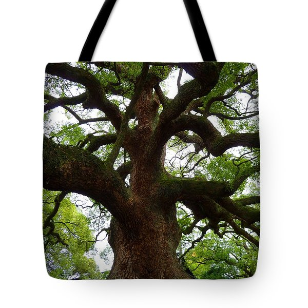 Strength Tote Bag by Julia Ivanovna Willhite