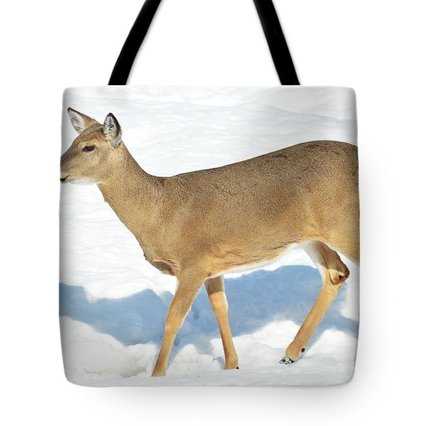 Tote Bag featuring the photograph Strike A Pose by Dacia Doroff