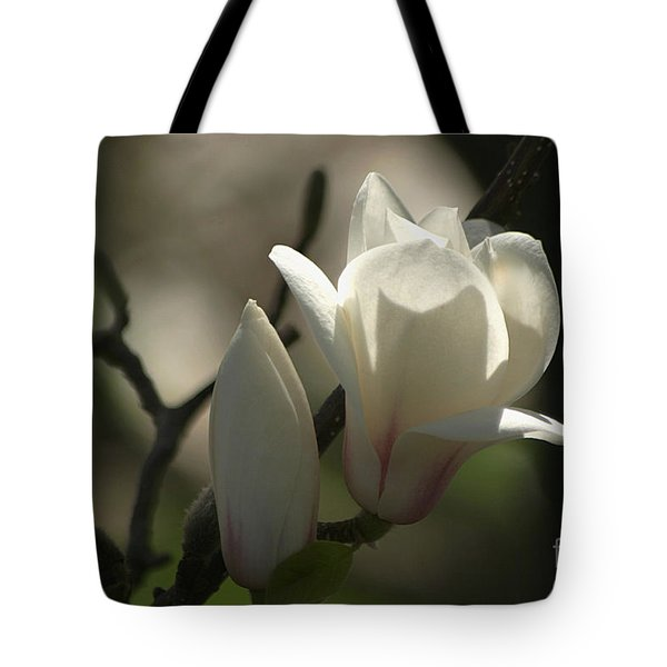 Sun Kissed  Tote Bag by Living Color Photography Lorraine Lynch