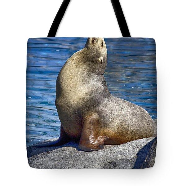 Sun Soaker  Tote Bag by Douglas Barnard
