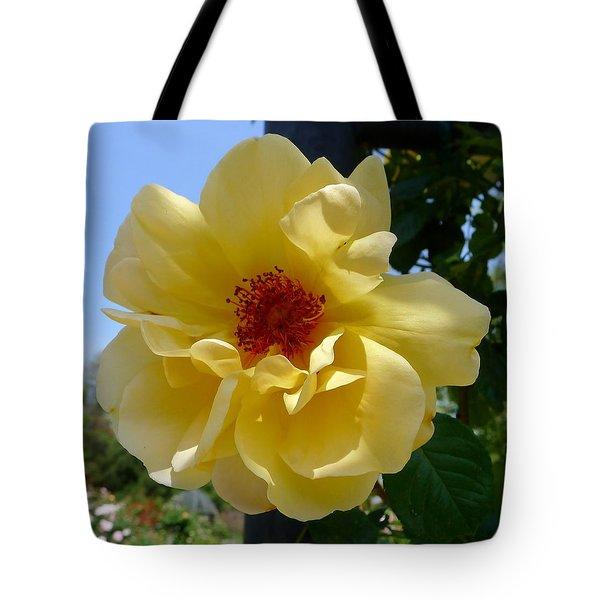 Sunny Yellow Rose Tote Bag