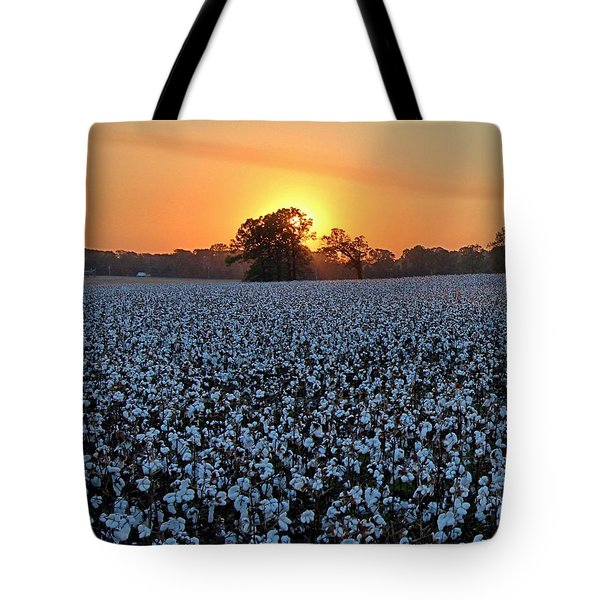 Sunset Over Cotton Tote Bag