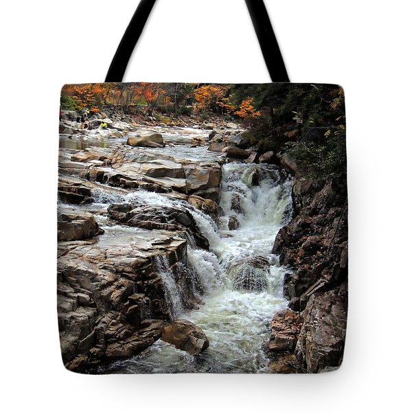 Swift River Tote Bag by Marcia Lee Jones