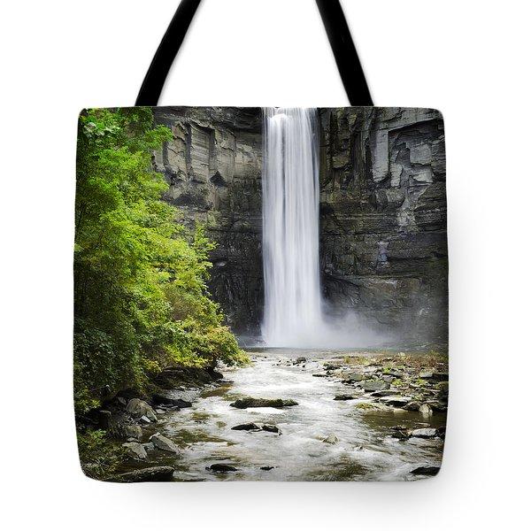 Taughannock Falls State Park Tote Bag