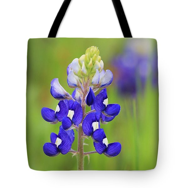 Tote Bag featuring the photograph Texas Bluebonnet by Elizabeth Budd