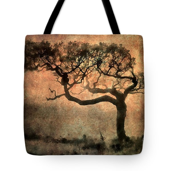Textured Tree In The Mist Tote Bag by Ray Pritchard
