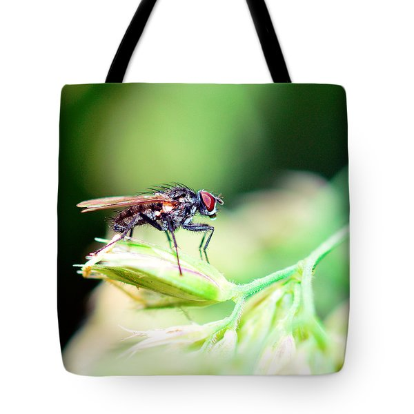The Fly Tote Bag by Tommytechno Sweden
