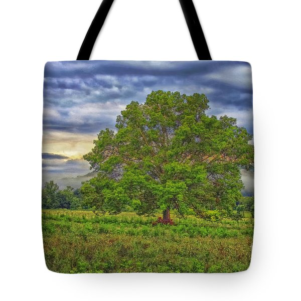 Tote Bag featuring the photograph The Tree by Geraldine DeBoer