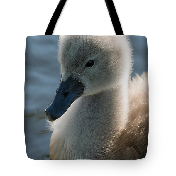 The Ugly Duckling Tote Bag