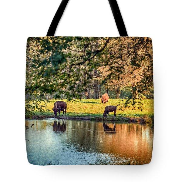 Thirsty Bison Tote Bag by Sennie Pierson