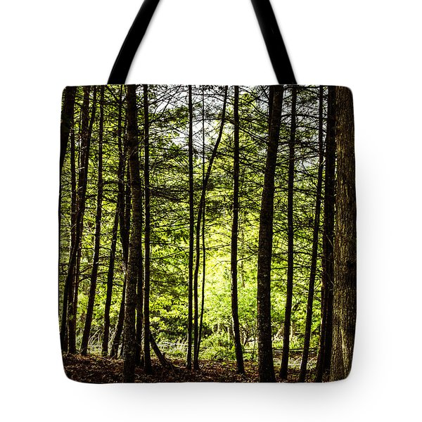 Thru The Trees With John Muir Quote Tote Bag