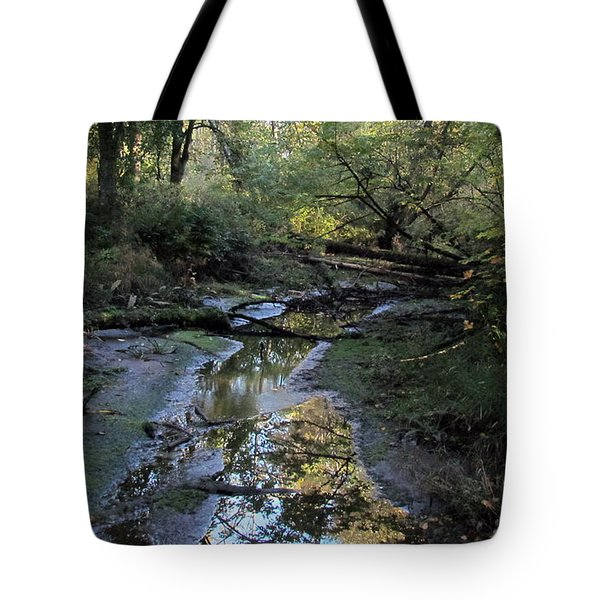 Tote Bag featuring the photograph Tidal Stream by I'ina Van Lawick
