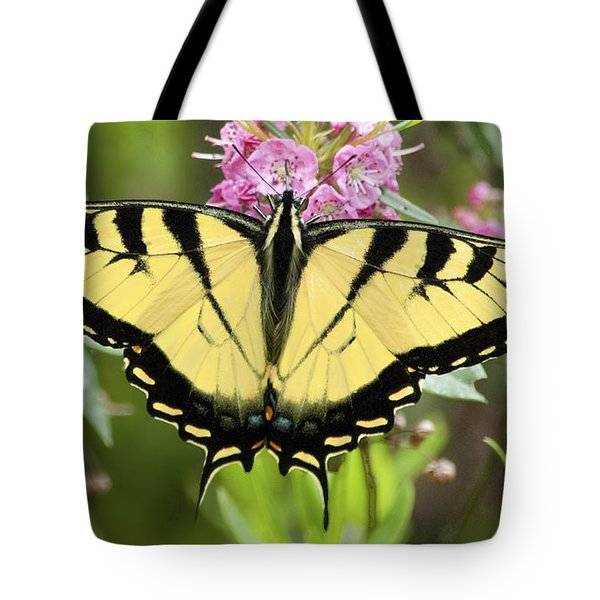 Tiger Swallowtail Butterfly On Milkweed Flowers Tote Bag