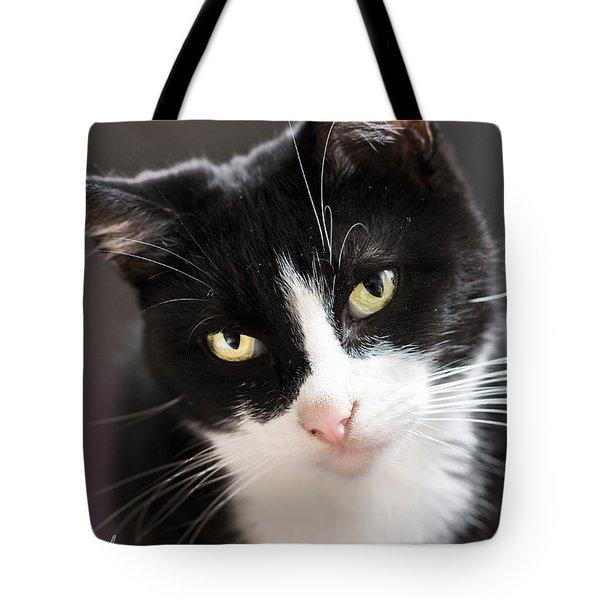Tiggles Tote Bag by Nick Kirby