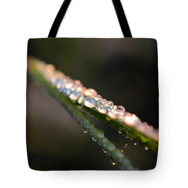 To See The Light... Tote Bag by Melanie Moraga