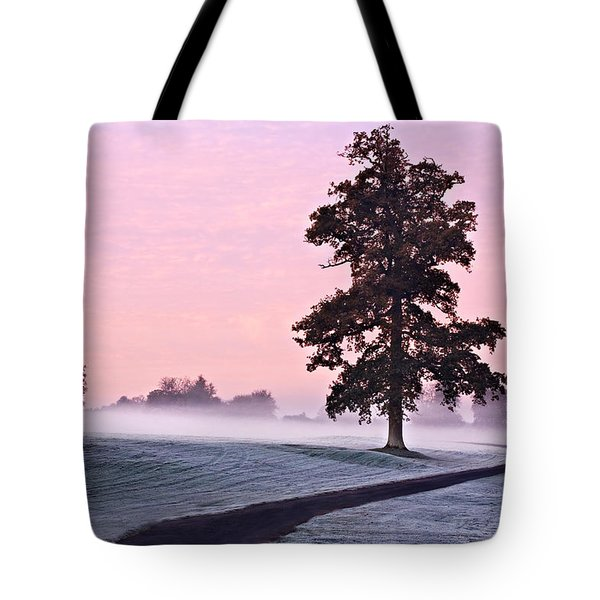 Tree At Dawn / Maynooth Tote Bag